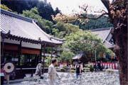 1999yoshino_honzenji01_s.jpg